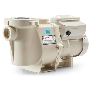 Pentair 011018 IntelliFlo motor