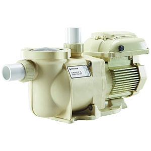 Pentair SuperFlo motor